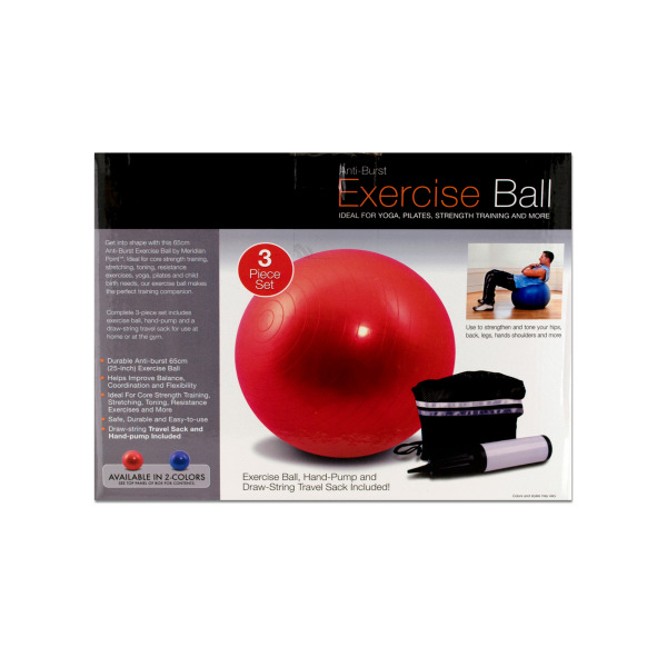 Exercise Ball with Pump | bulk buys